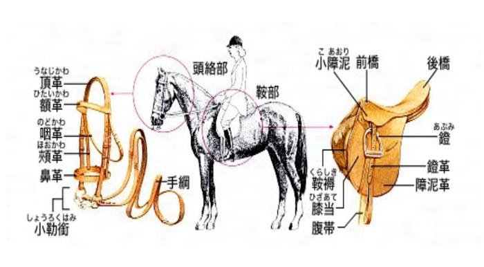 さまざまな馬具